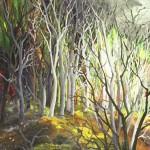 Šuma 3, ulje - stako, 20x20, 2003.