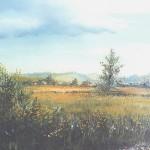 10. Livade, ulje-staklo, 30x40, 1993.