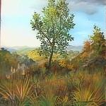 16. Usamljeno drvo, ulje-staklo, 25x25, 1993.