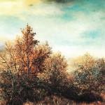 23. Šuma u jesen, ulje-staklo, 25x30, 1993.