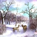 27. Košute zimi, ulje-staklo, 25x30,1985.