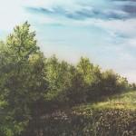 47. Proljeće na rubu šume, ulje-staklo, 30x40,1988.