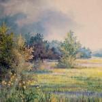 64. Livade poslje kiše, ulje-staklo, 25x30 1998.