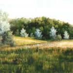 69. Podbukovje, ulje-staklo, 30x40, 1998.