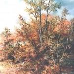 71. Grmlje u listopadu, ulje-staklo, 30x25, 1990.