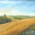 79. Žitna polja, ulje - staklo, 60x80, 1999.