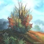 Usamljeni grm, ulje - staklo, 40x40, 2002.